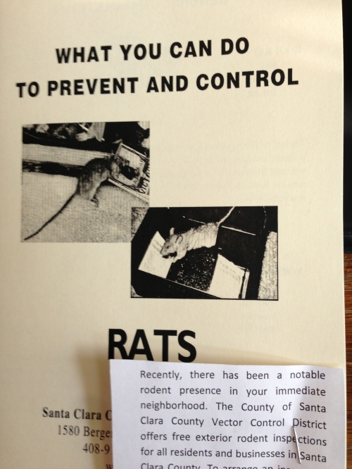 How to prevent Rats pamphlet